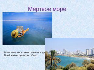 Мертвое море В Мертвом море очень соленая вода. В ней живые существа гибнут.
