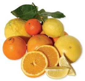4e5fd9c69342e_1305863332_citrus