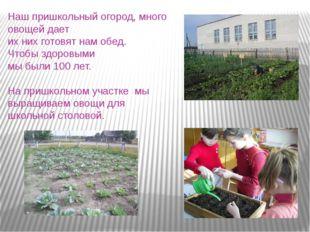 Наш пришкольный огород, много овощей дает их них готовят нам обед. Чтобы здор