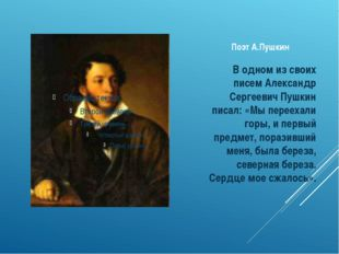 Поэт А.Пушкин В одном из своих писем Александр Сергеевич Пушкин писал: «Мы пе