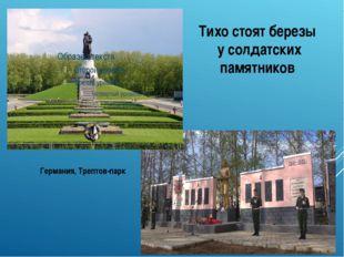 Тихо стоят березы у солдатских памятников Германия, Трептов-парк