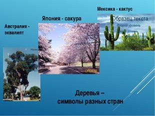 Деревья – символы разных стран Австралия - эквалипт Мексика - кактус Япония -
