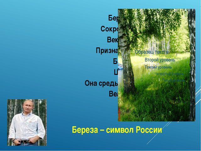 Береза – символ России Береза – символ России, Сокровище русской земли. Века...