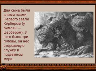 Два сына были злыми псами. Первого звали Кербером (у римлян — Цербером). У не