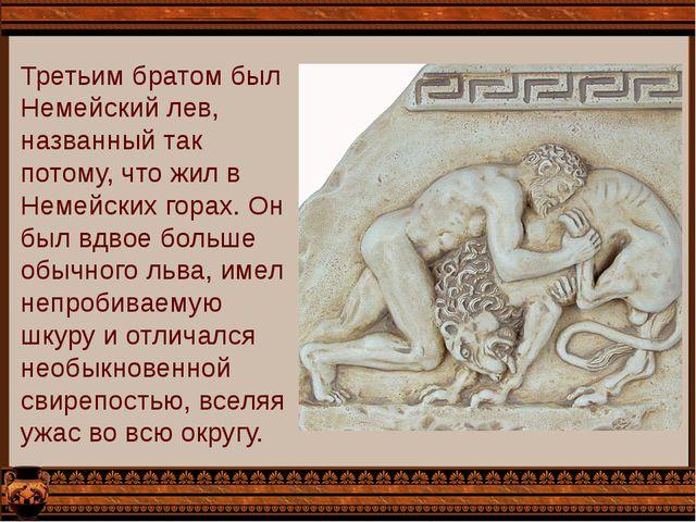 Третьим братом был Немейский лев, названный так потому, что жил в Немейских г...