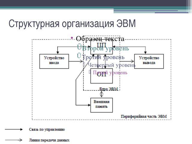 Структурная организация ЭВМ