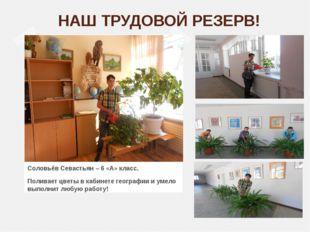 НАШ ТРУДОВОЙ РЕЗЕРВ! Соловьёв Севастьян – 6 «А» класс. Поливает цветы в кабин