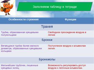 Заполняем таблицу в тетради Особенности строения Функции Трахея Трубка, обра