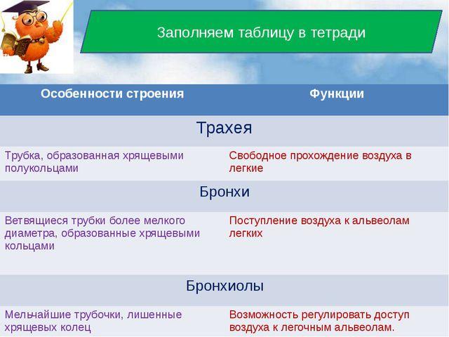 Заполняем таблицу в тетради Особенности строения Функции Трахея Трубка, обра...