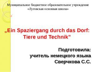 Муниципальное бюджетное образовательное учреждение «Луговская основная школа»