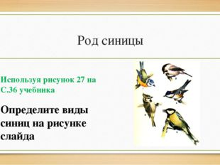 Род синицы Используя рисунок 27 на С.36 учебника Определите виды синиц на рис