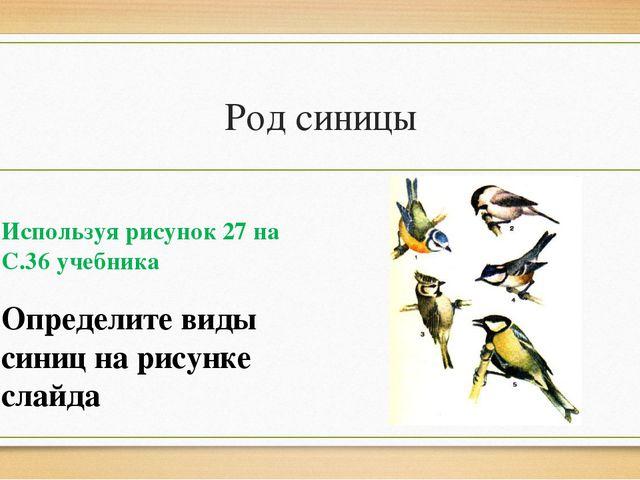 Род синицы Используя рисунок 27 на С.36 учебника Определите виды синиц на рис...