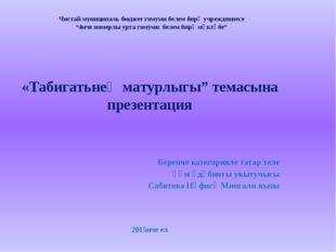 """Чистай муниципаль бюджет гомуми белем бирү учреждениесе """"4нче номерлы урта го"""