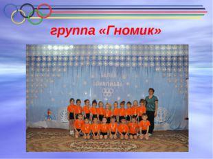 группа «Гномик»