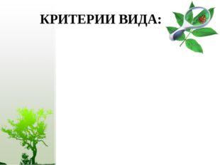 КРИТЕРИИ ВИДА: Морфологический Физиологический Географический Экологический Г