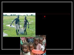 Гуманитарная помощь. Международные организации и развитые страны мира оказыва