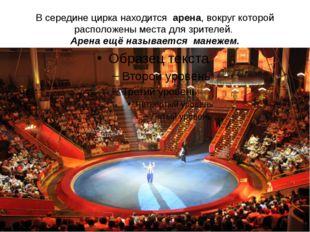 В середине цирка находится арена, вокруг которой расположены места для зрител