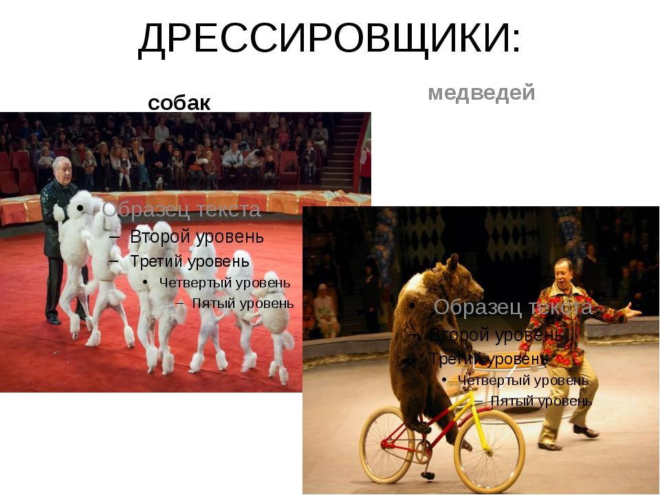 ДРЕССИРОВЩИКИ: собак медведей