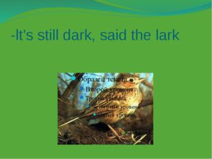 -lt's still dark, said the lark