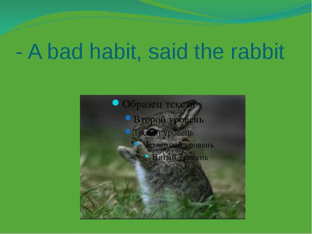 - A bad habit, said the rabbit
