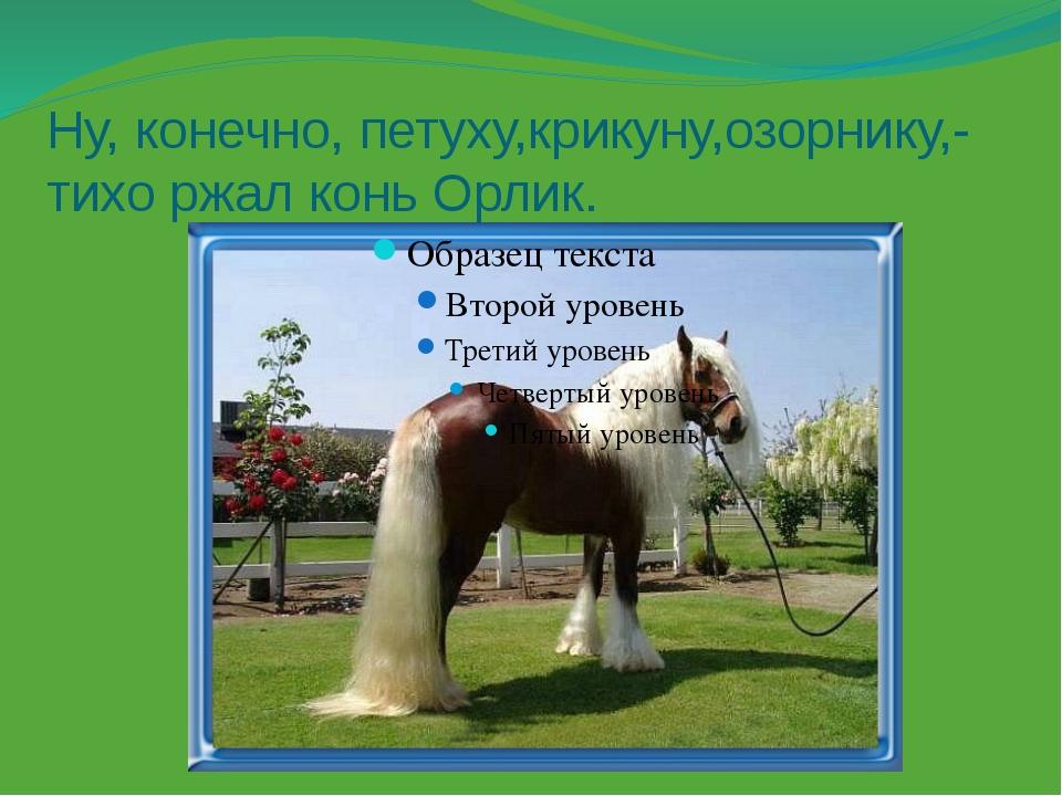 Ну, конечно, петуху,крикуну,озорнику,- тихо ржал конь Орлик.