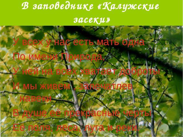 В заповеднике «Калужские засеки» У всех у нас есть мать одна По имени Природа...