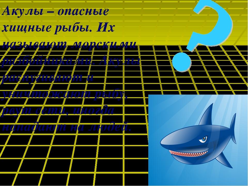 Акулы – опасные хищные рыбы. Их называют морскими разбойниками. Акулы распуги...