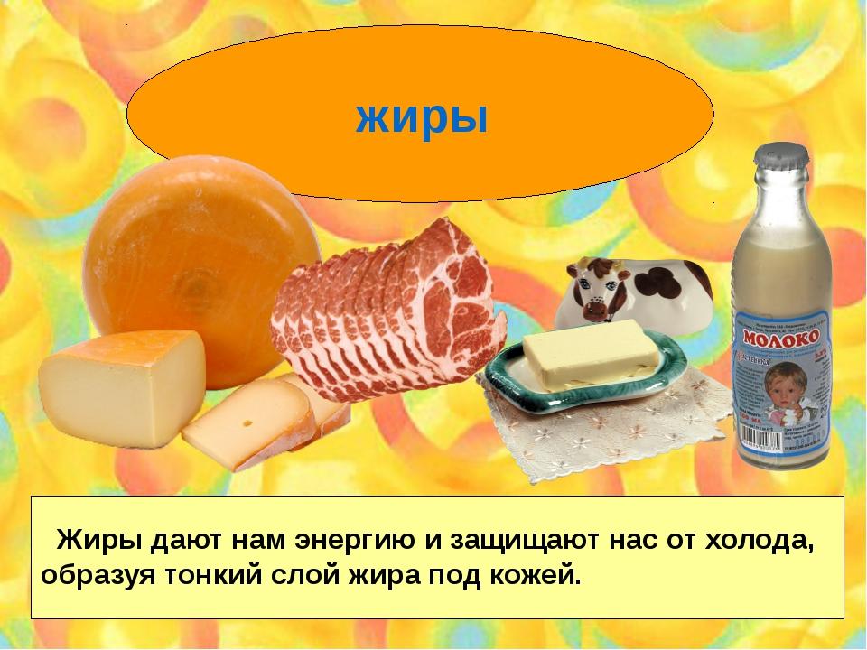 жиры Жиры дают нам энергию и защищают нас от холода, образуя тонкий слой жир...
