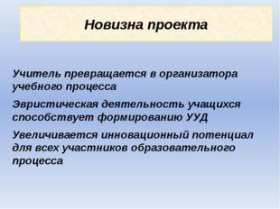 Новизна проекта Учитель превращается в организатора учебного процесса Эвристи