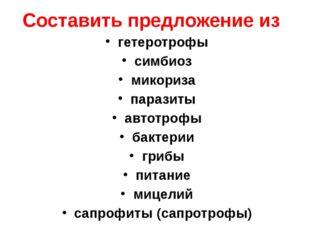 Составить предложение из гетеротрофы симбиоз микориза паразиты автотрофы бакт