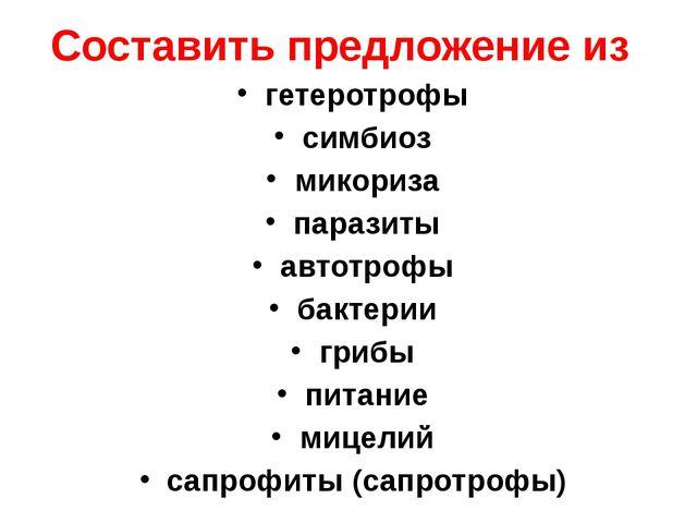 Составить предложение из гетеротрофы симбиоз микориза паразиты автотрофы бакт...