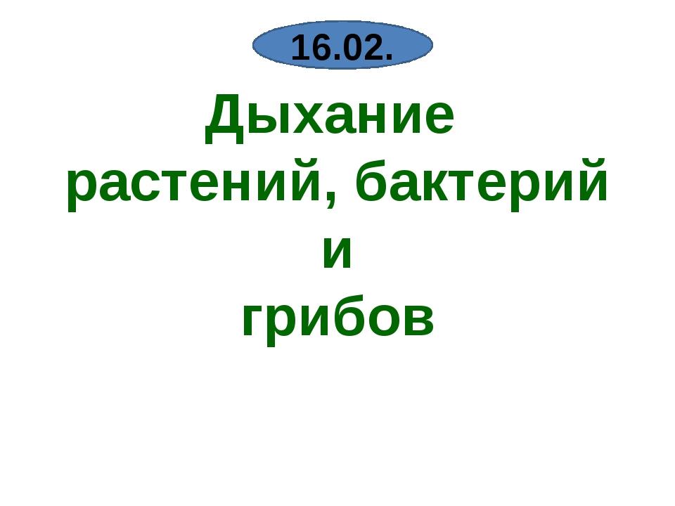 Дыхание растений, бактерий и грибов 16.02.