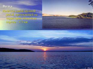 Волга Является самой крупной рекой, протекающей на территории области на отре