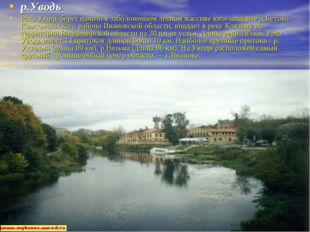 р.Уводь Река Уводь берет начало в заболоченном лесном массиве юго-западнее д.
