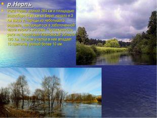 р.Нерль Река Нерль длиной 284 км и площадью водосбора 6780 км кв берет начало
