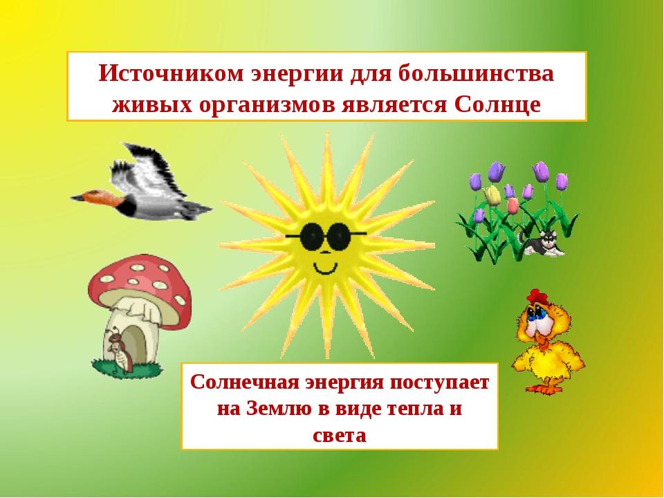 Источником энергии для большинства живых организмов является Солнце Солнечная...