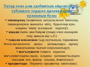 Татар теле һәм әдәбиятын өйрәнгәндә, түбәндәге төрдәге проектларны кулланып б
