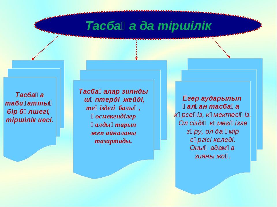 Тасбақа да тіршілік Тасбақа табиғаттың бір бөлшегі, тіршілік иесі. Тасбақалар...