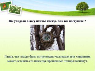 Вы увидели в лесу птичье гнездо. Как вы поступите ? Птица, чье гнездо было п