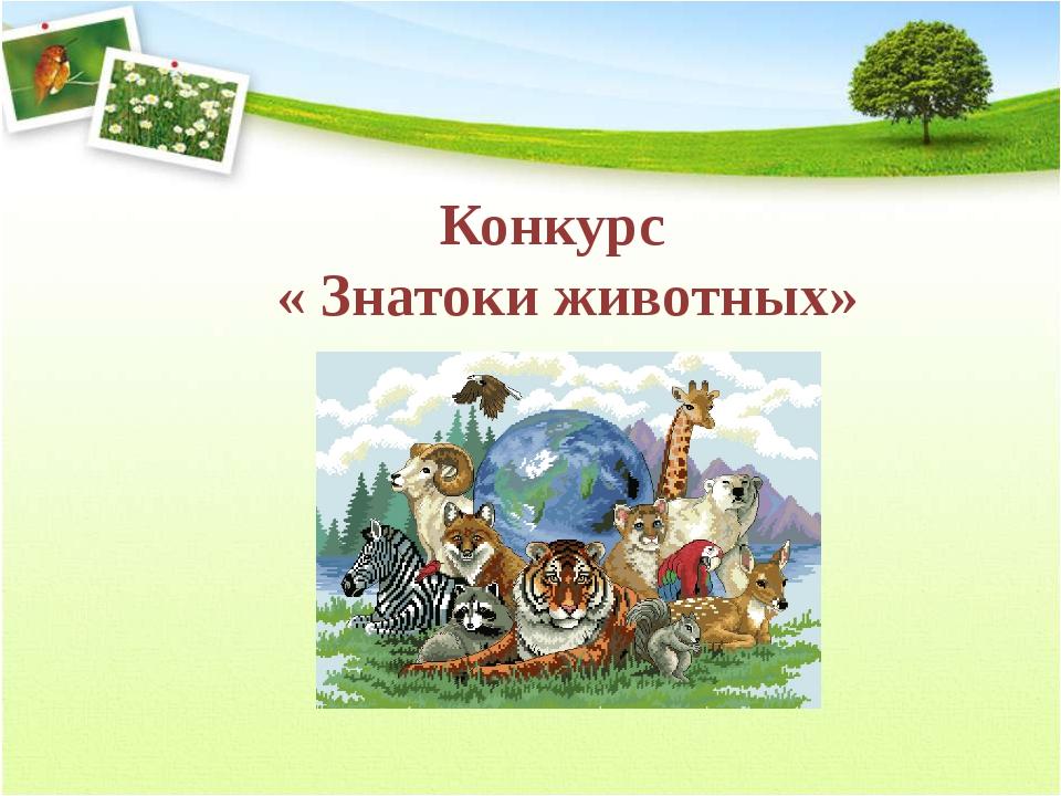 Конкурс « Знатоки животных»