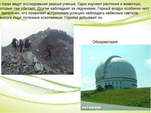 В горах ведут исследования разные ученые. Одни изучают растения и животных, к
