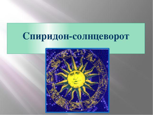 Спиридон-солнцеворот