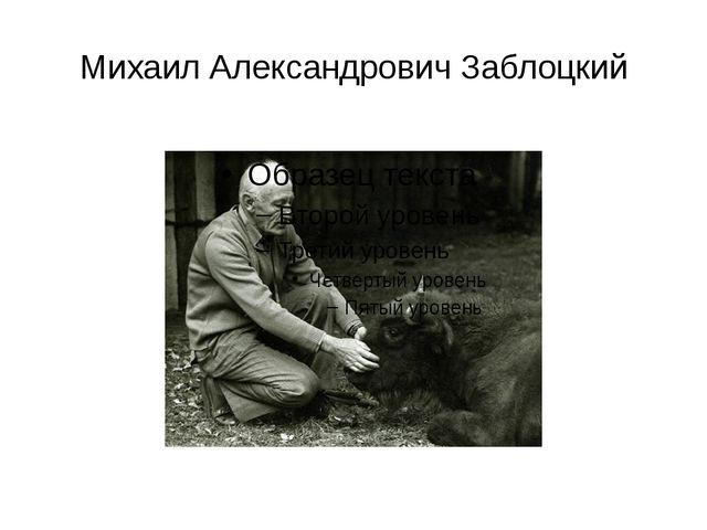 Михаил Александрович Заблоцкий