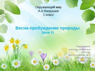 Весна-пробуждение природы (урок 1) Подготовила учитель начальных классов МАОУ