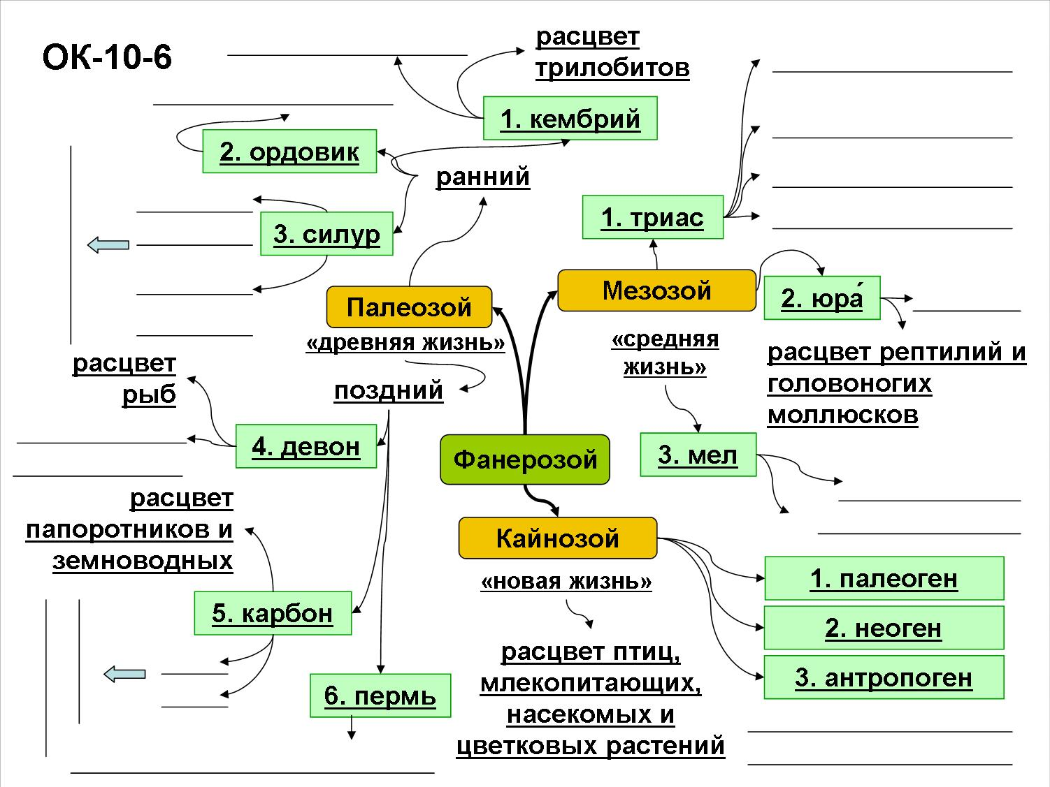 http://biologia.sch690.ru/DswMedia/ok-10-6fanerozoy.jpg
