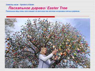 Cимволы пасхи / Symbols of Easter Пасхальное дерево/ Easter Tree Пасхальные я