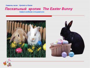 Cимволы пасхи / Symbols of Easter Пасхальный кролик The Easter Bunny Символ
