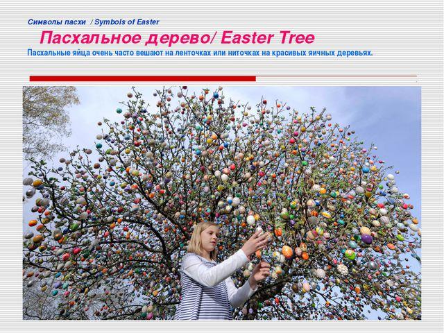 Cимволы пасхи / Symbols of Easter Пасхальное дерево/ Easter Tree Пасхальные я...