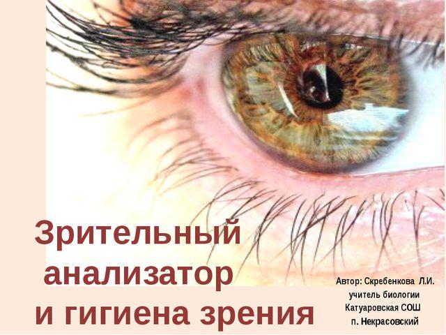 Зрительный анализатор и гигиена зрения Автор: Скребенкова Л.И. учитель биолог...