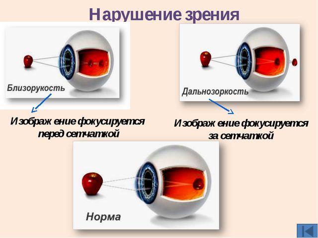 Источники материалов http://www.inauka.ru/science/article81245 http://nashol....